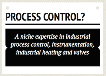 Experts in Process Control Web Sites